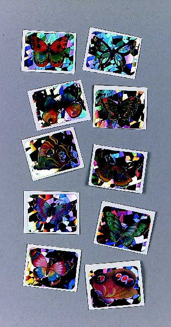 Missing image <01391.jpg> Group: 391 - BUTTERFLY STICKERS