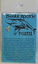 Missing image <09203.jpg> Group: 203 - SHARK TOOTH ON CARD