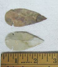 Missing image &lt;174040llargearrow_w.jpg&gt; Group: 40402 - LARGE ARROWHEAD<BR>Average size: 2-3 inches