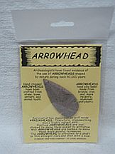 Missing image &lt;174049llargearrow_w.jpg&gt; Group: 40490 - LARGE ARROWHEAD ON CARD <BR>Average size 2-3 inches<br>